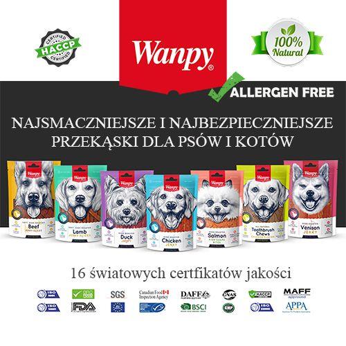 wanpy 500x500